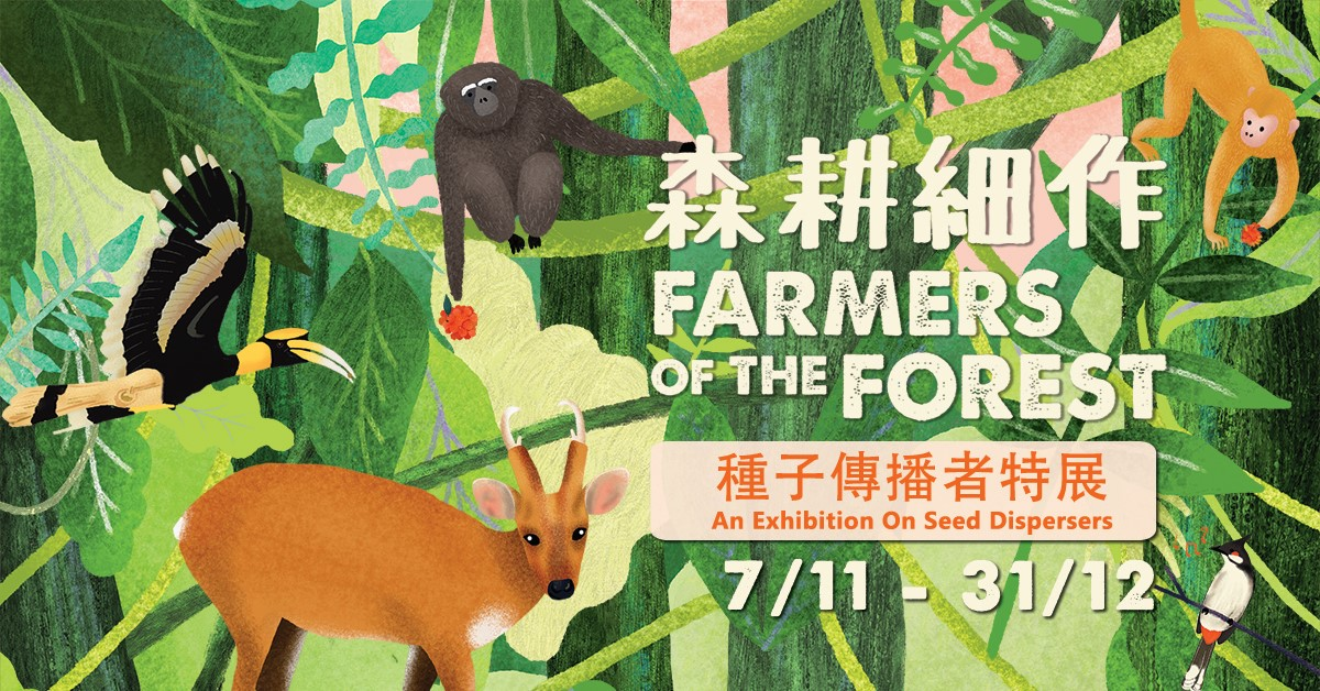 Farmers of the Forest: An Exhibition about Seed Dispersers